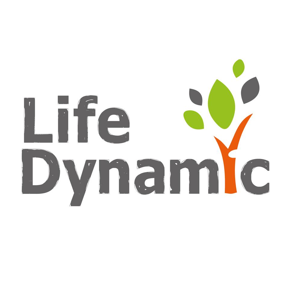 Dynamic Life logo – redesigned